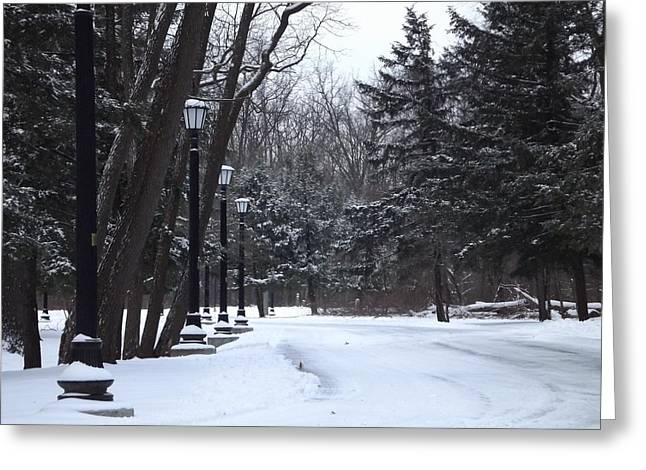 Road Covered With Snow Greeting Cards - Snow Dr. Greeting Card by Nicholas Baker