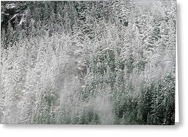 David Yunker Greeting Cards - Snow Dusted North Cascades Greeting Card by David Yunker