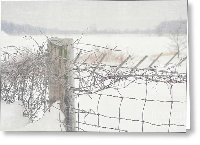 Barriers Greeting Cards - Snow fence Greeting Card by Sandra Cunningham