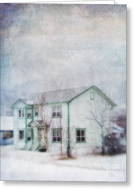 Flurry Greeting Cards - Snow Flurry round My Neighbors House Greeting Card by Priska Wettstein
