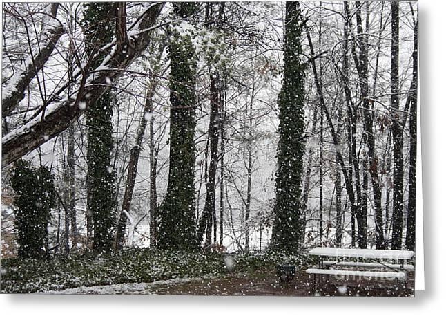 Sale Printing Greeting Cards - Snow in Atlanta Greeting Card by Michael Waters