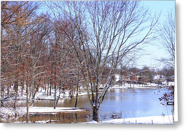 Snow-covered Landscape Digital Art Greeting Cards - Snow in Dixie Greeting Card by Barry Jones