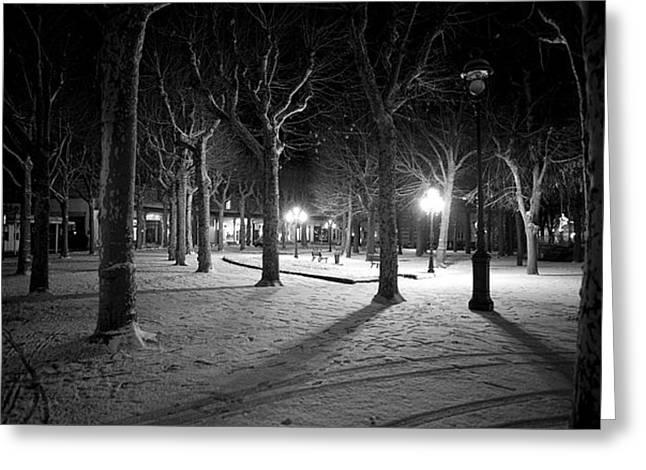 Vichy Greeting Cards - Snow in Vichy central park Greeting Card by Alexander Davydov