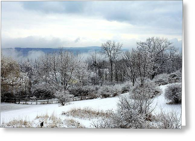 Ithaca Greeting Cards - Snow in winter Ithaca New York Greeting Card by Paul Ge