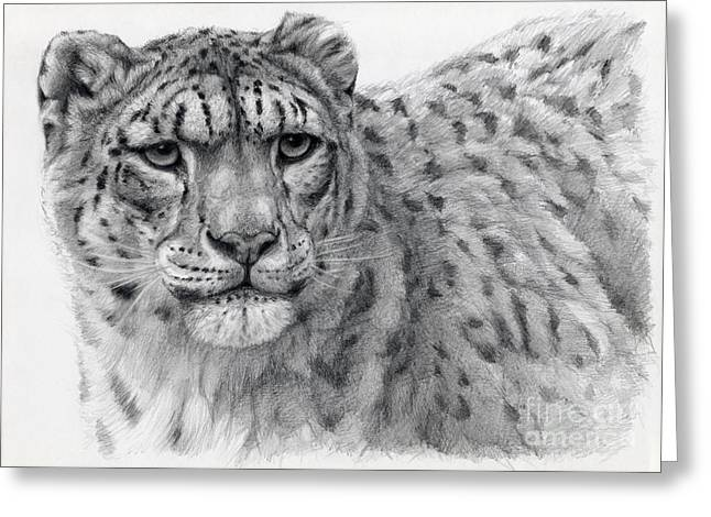 Leopard Drawings Greeting Cards - Snow Leopard Portrayal Greeting Card by Svetlana Ledneva-Schukina