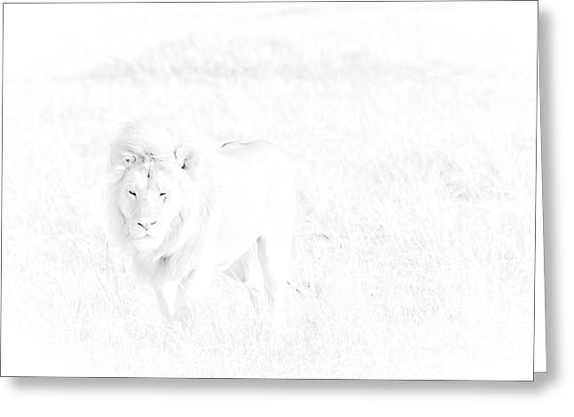 Confident Cat Greeting Cards - Snow Lion Greeting Card by Darcy Michaelchuk