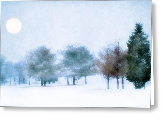 Quite Photographs Greeting Cards - Snow Moon Greeting Card by Darren Fisher