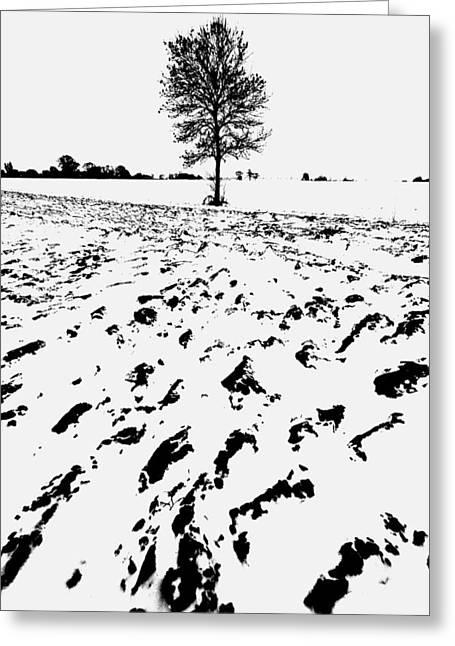 Mud Season Greeting Cards - Snow On Norfolk Farmland Greeting Card by Darren Burroughs