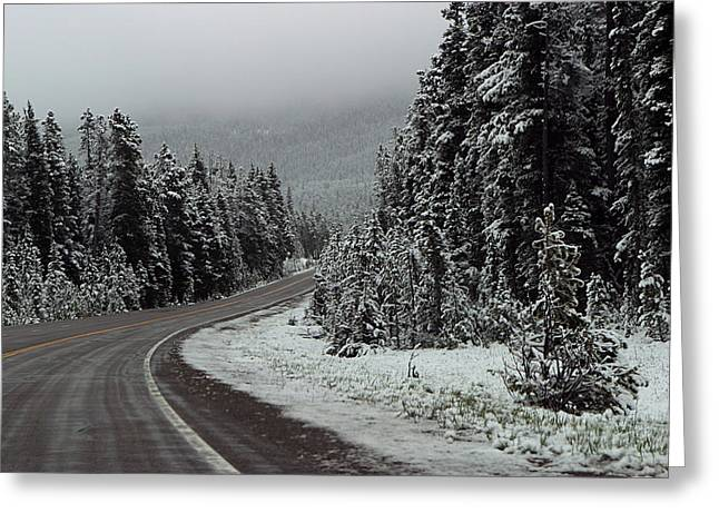 Yellow Line Digital Art Greeting Cards - Snow on Road Through Forest Greeting Card by Linda Phelps