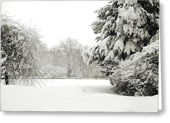 Runnycustard Greeting Cards - Snow packed Park Greeting Card by Lenny Carter
