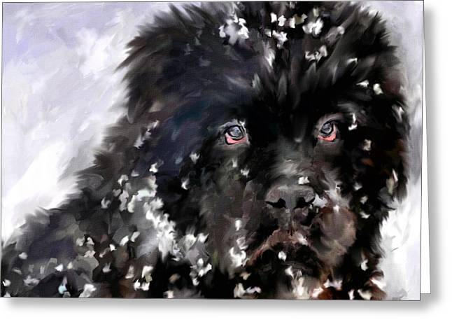 Dog In Snow Greeting Cards - Snow Play Greeting Card by Jai Johnson