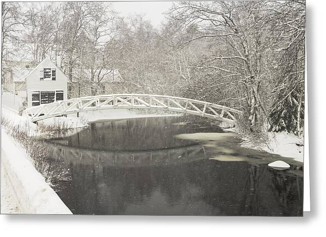 Somesville Maine Greeting Cards - Snow Storm In Somesville Mount Desert Island Maine Photograph Greeting Card by Keith Webber Jr