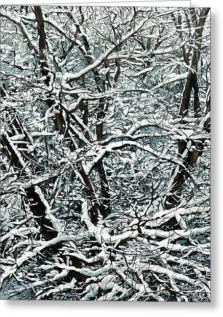 Nadi Spencer Paintings Greeting Cards - Snow Tree Greeting Card by Nadi Spencer