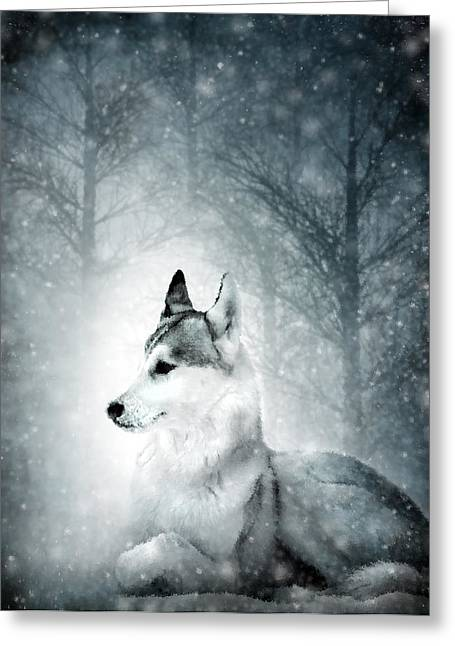 Misty Mixed Media Greeting Cards - Snow Wolf Greeting Card by Svetlana Sewell