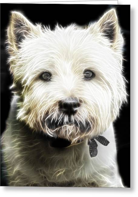 Westie Digital Greeting Cards - Snowball Greeting Card by Tilly Williams