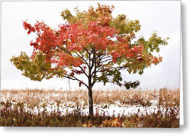 Field. Cloud Digital Art Greeting Cards - Snowy Autumn Greeting Card by George Hausler
