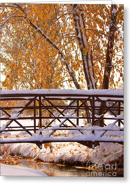 Snow Tree Prints Greeting Cards - Snowy Autumn Walking Bridge Greeting Card by James BO  Insogna