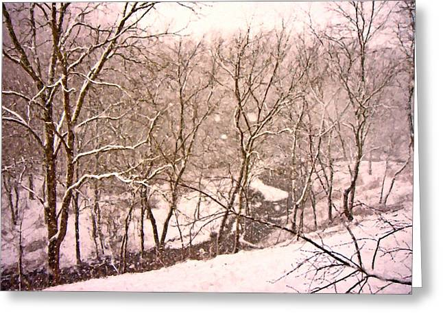 Snow-covered Landscape Digital Art Greeting Cards - Snowy Country Day Greeting Card by Betsy C  Knapp