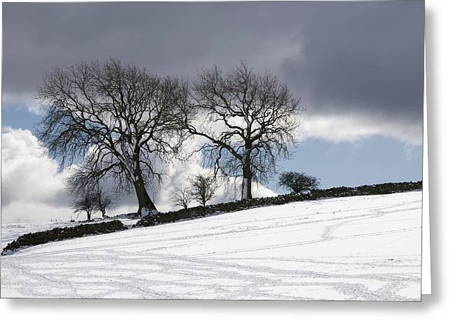 Snowy Day Greeting Cards - Snowy Field, Weardale, County Durham Greeting Card by John Short