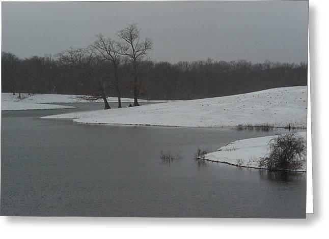 Winter Park Greeting Cards - Snowy Lake 1 Greeting Card by Douglas Barnett