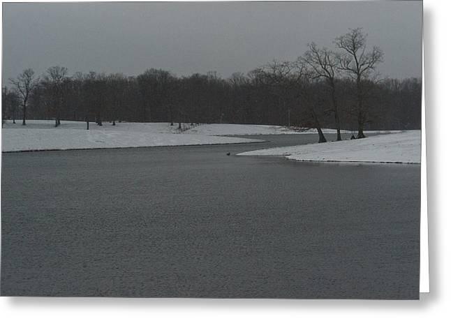 Winter Park Greeting Cards - Snowy Lake 2 Greeting Card by Douglas Barnett