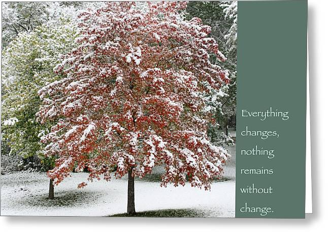 Snowy Maple with Buddha Quote Greeting Card by Heidi Hermes