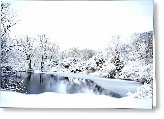 Dk Greeting Cards - Snowy Pond Greeting Card by Jan Faul