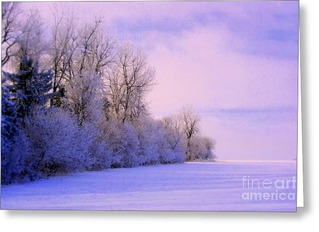 Snowy Day Greeting Cards - Snowy Sunday Greeting Card by Julie Lueders