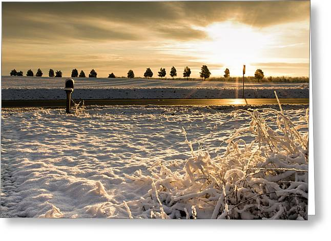 Storm Prints Greeting Cards - Snowy Sunrise Greeting Card by Lori Coleman