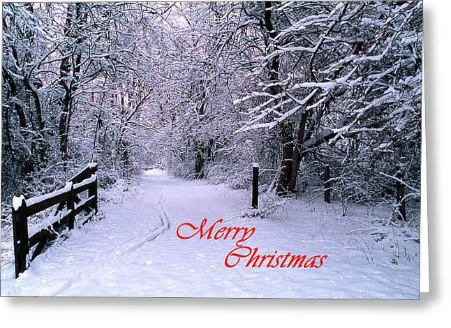 Christmas Greeting Photographs Greeting Cards - Snowy Trail Merry Christmas Greeting Card by Skip Willits