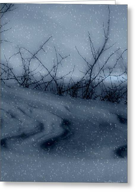 Snowstorm Digital Art Greeting Cards - Snowy Tranquility Greeting Card by Kenneth Krolikowski