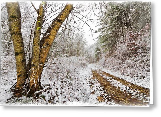 Wintry Photographs Greeting Cards - Snowy Watercolor Greeting Card by Debra and Dave Vanderlaan