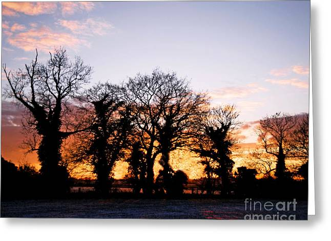 Winter Scenes Rural Scenes Greeting Cards - Snowy Winter Sunset Greeting Card by Chris Smith
