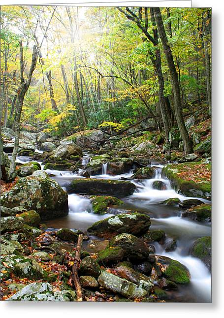 Beautiful Creek Greeting Cards - So Softly  Greeting Card by Darren Fisher