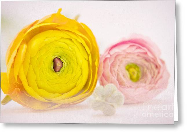 Tenderly Greeting Cards - So sweet Greeting Card by Angela Doelling AD DESIGN Photo and PhotoArt