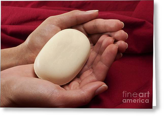 Body Conscious Greeting Cards - Soap in hands Greeting Card by Blink Images