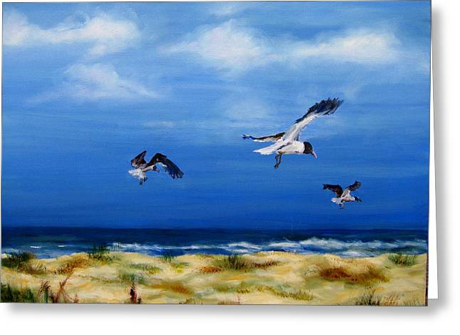 Diane Kraudelt Greeting Cards - Soaring Over The Banks Greeting Card by Diane Kraudelt