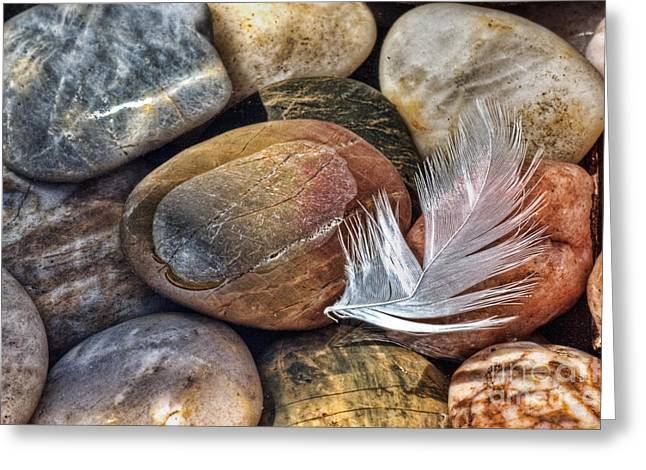 Colored Stones Greeting Cards - Soft Landing Greeting Card by John Edwards