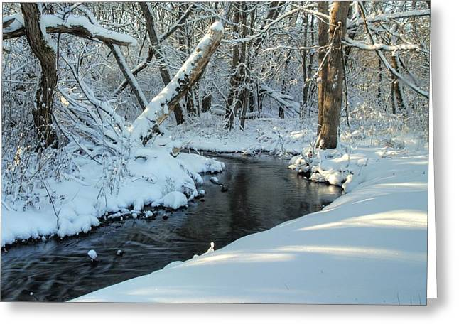 Beautiful Creek Greeting Cards - Soft Snowy Woods Greeting Card by Donna Caplinger