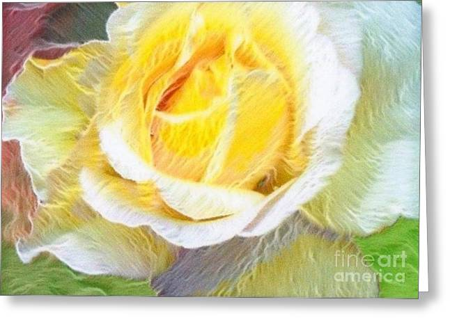 Soft Light Pastels Greeting Cards - Softly Blooming Rose Greeting Card by AE Hansen