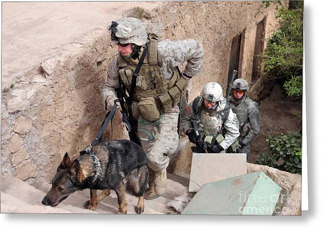 Best Sellers -  - Working Dog Greeting Cards - Soldiers Move To The Roof Of A Metal Greeting Card by Stocktrek Images