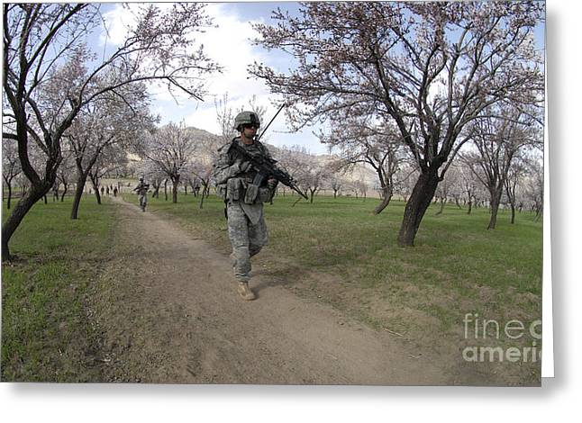 Holding Gun Greeting Cards - Soldiers Walk Through An Almond Orchid Greeting Card by Stocktrek Images