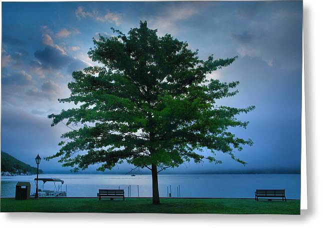 Keuka Greeting Cards - Solitary Tree Greeting Card by Steven Ainsworth