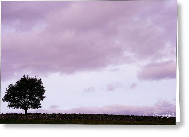 Heathland Greeting Cards - Solitude - Denbigh Moors Greeting Card by Nomad Art And  Design