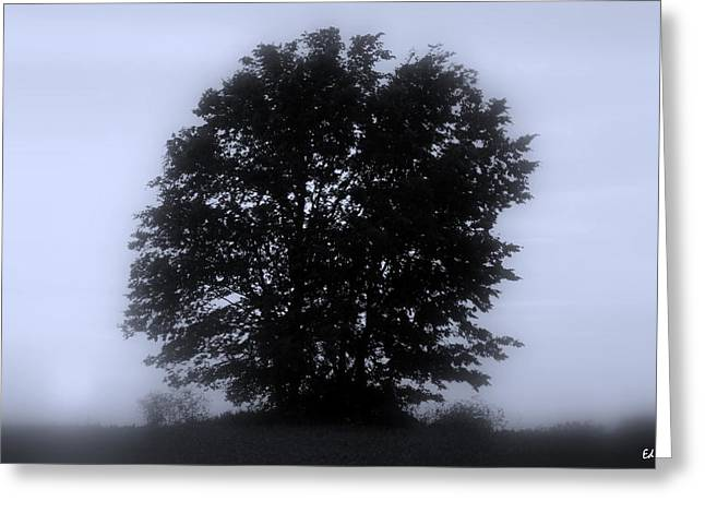 Indiana Landscapes Digital Art Greeting Cards - Solitude Greeting Card by Ed Smith