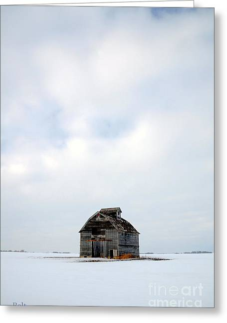 Rural Snow Scenes Greeting Cards - Solitude in Pure Greeting Card by Christine Belt