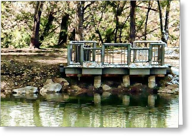 Fountain Creek Nature Center Greeting Cards - Solitude Greeting Card by Michelle Frizzell-Thompson