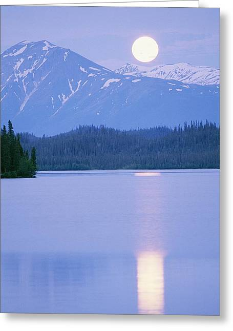 Park Scene Greeting Cards - Solstice Full Moon Rising Over Silver Greeting Card by Rich Reid