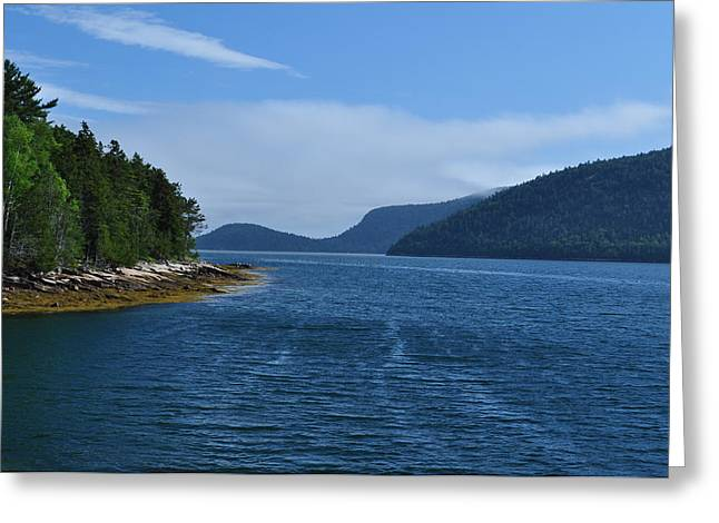 Somes Sound Greeting Cards - Somes Sound Greeting Card by Jeff Moose
