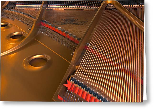 Sound Board Greeting Cards - Something Grand Greeting Card by Steven Richardson